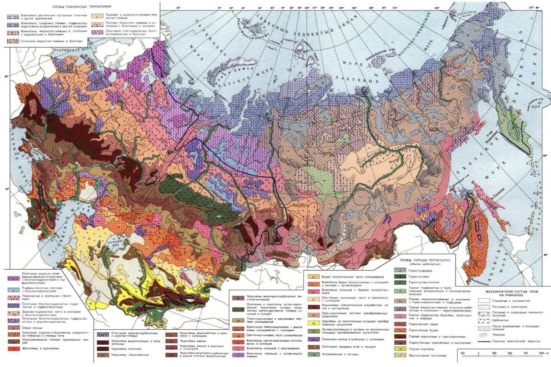 Карта почв России